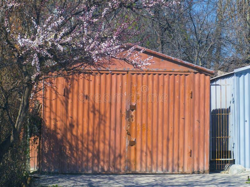Garaje del metal y árbol floreciente hermoso imagenes de archivo