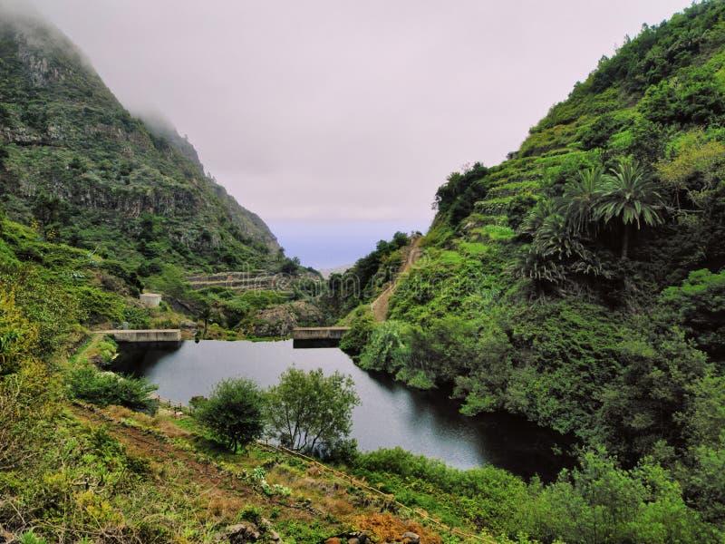 Garajonay Nationaal Park royalty-vrije stock foto