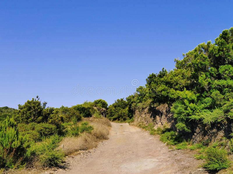 Garajonay National Park. On the island La Gomera, Canary Islands, Spain royalty free stock photos