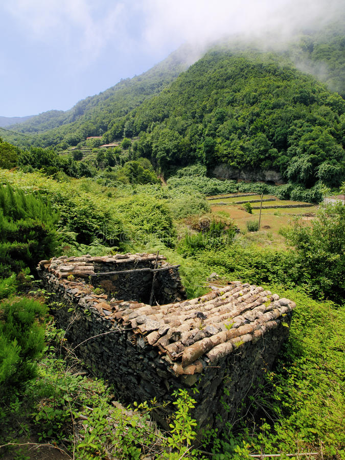 Garajonay National Park. On the island La Gomera, Canary Islands, Spain stock image