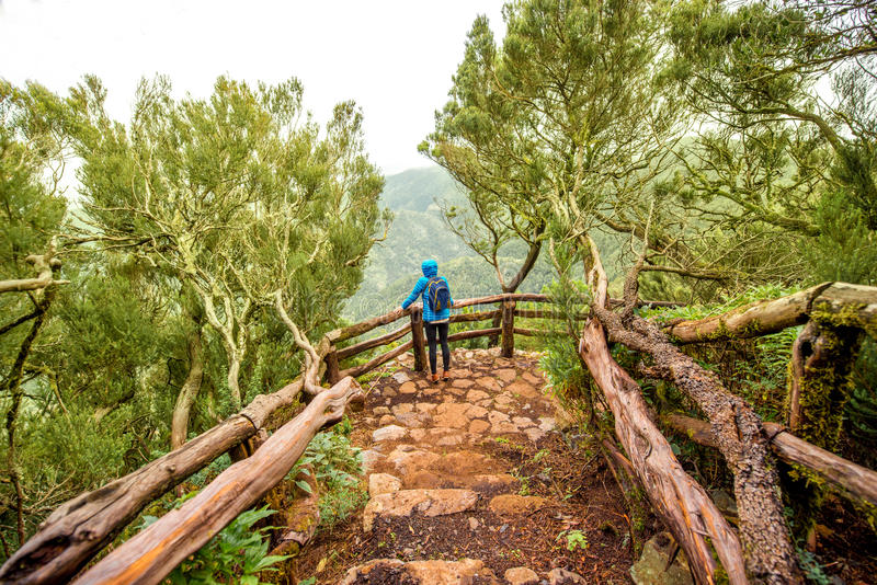 Garajonay park on La Gomera island. Evergreen forest in Garajonay national park with female tourist in blue jacket standing on the viewpoint terrace on La Gomera stock image