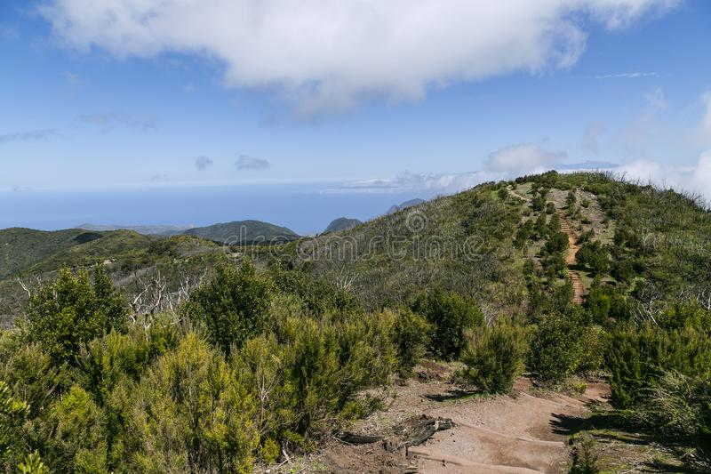 Garanjonay and its legendary laurel forests. The great natural treasure of La Gomera are the laurel-like forests. They are leafy and have a deep green color stock photography