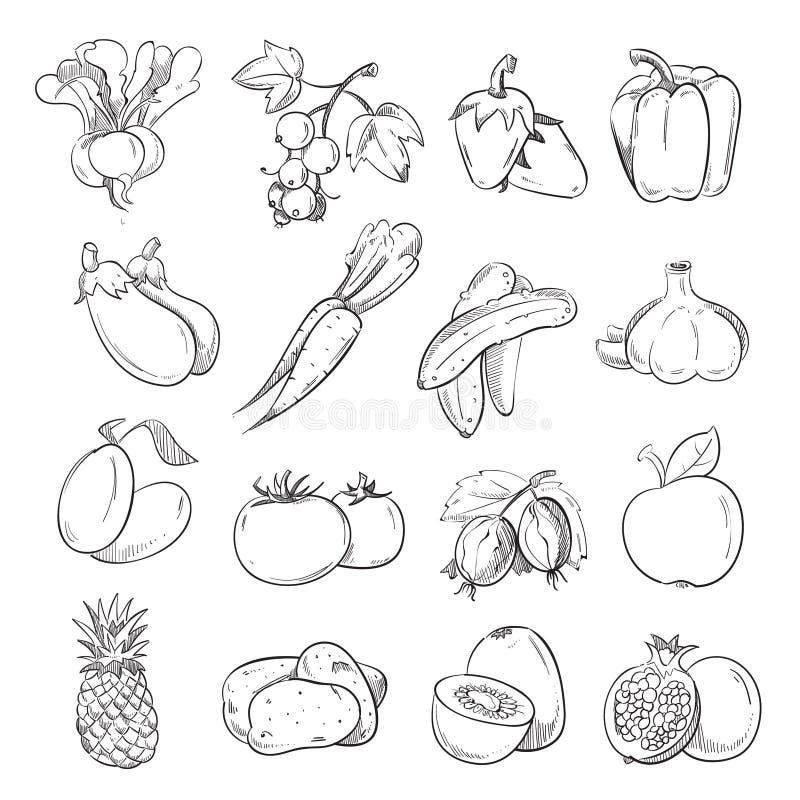 Garatujas dos vegetais e dos frutos, vegetariano do desenho da mão que cozinha ícones do alimento ilustração stock
