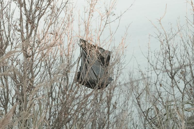 Garbage bag on the tree - Environmental preservation royalty free stock photography