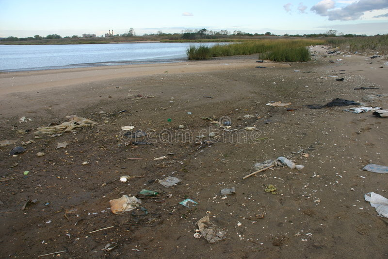 Garbage on beach royalty free stock image
