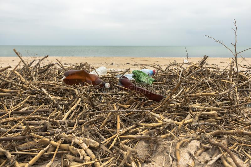 Garbage on the beach. Empty plastic bottles and dry reeds on the sand. Environmental pollution stock photos