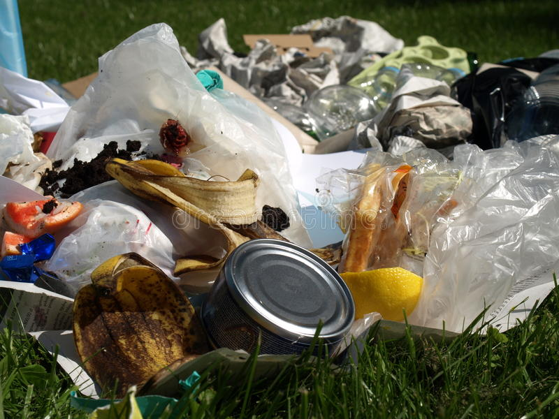 Download Garbage, closeup stock photo. Image of green, forest - 25949176