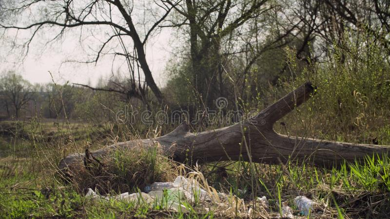 Garbage lying in the forest. Damage to nature from human irresponsibility. Save nature concept royalty free stock photo