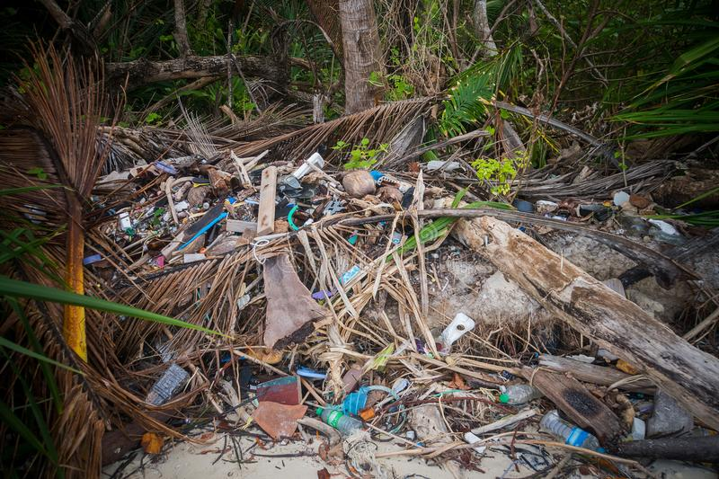 Garbage pile deposit Branches wood, royalty free stock photography