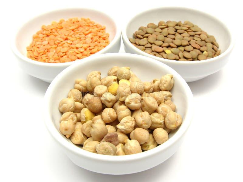 Garbanzos lentils and red lentils. Three bowls of chinaware with garbanzos lentils and red lentils royalty free stock image