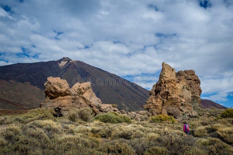 Garcia skała, Tenerife obraz royalty free