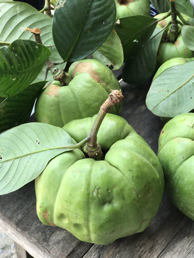 Garciniaatroviridis of van Garcinia of Malabar-tamarinde of Getijgerde bes of Assam-fruit stock foto's
