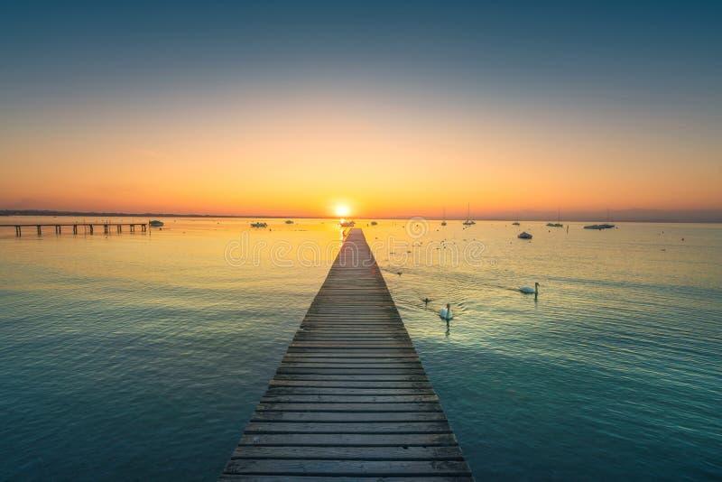 Garda湖、天鹅和跳船,从Pacengo拉齐塞的日落视图 它 库存照片