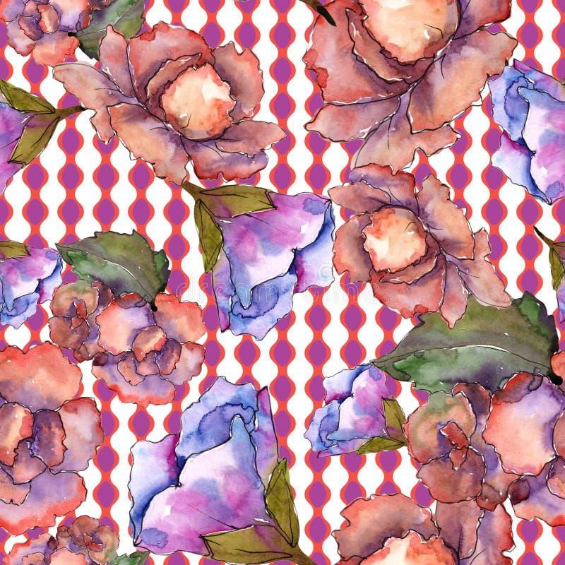 Gardania rosa e porpora Fiore botanico floreale Modello senza cuciture del fondo illustrazione vettoriale