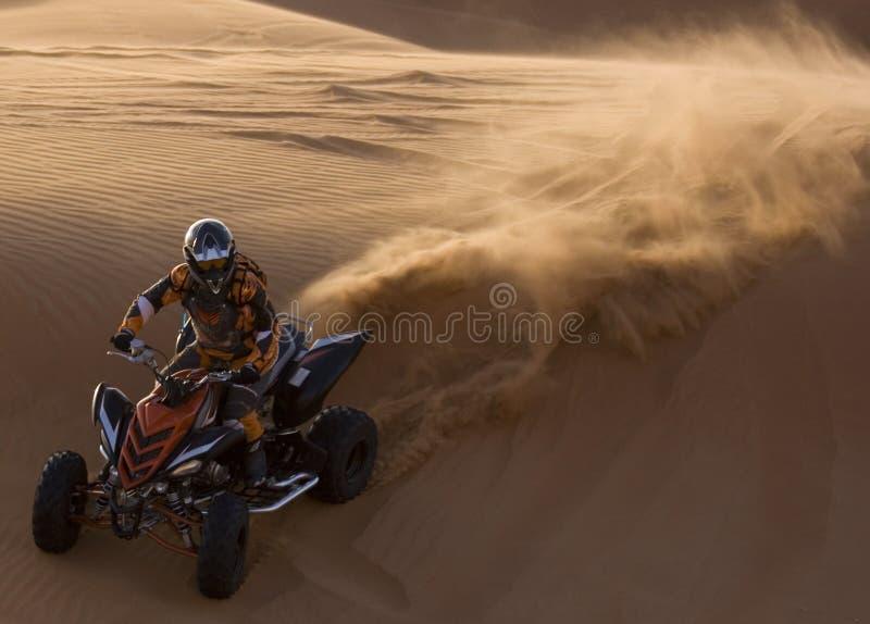 Garde forestier de dunes images stock