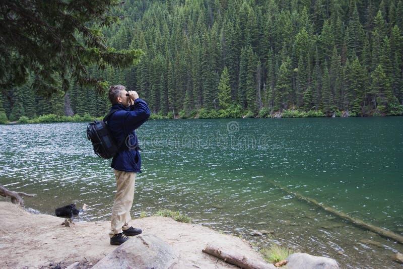 Garde forestier de stationnement observant attentivement la faune photo stock