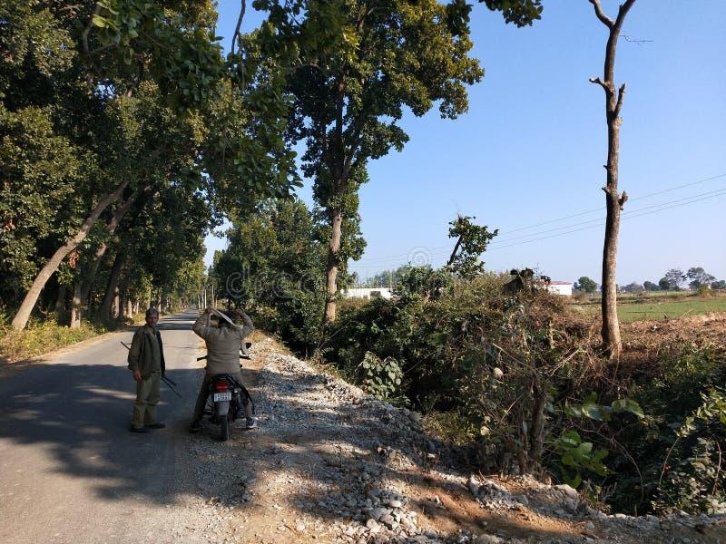 Garde indienne de forêt près de route latérale de forêt image stock