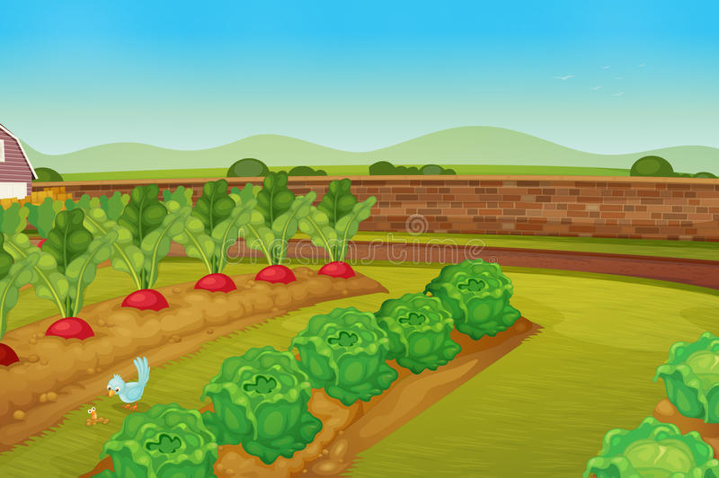 Garden royalty free illustration