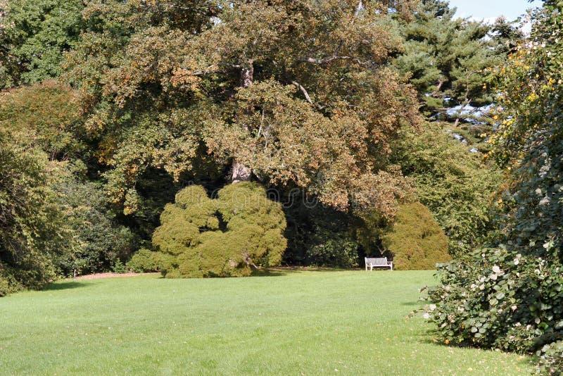 In the Garden 3 royalty free stock photos