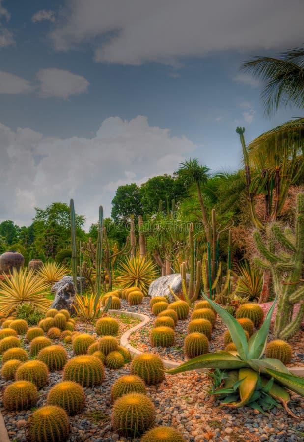 Free Garden Stock Photography - 31085442