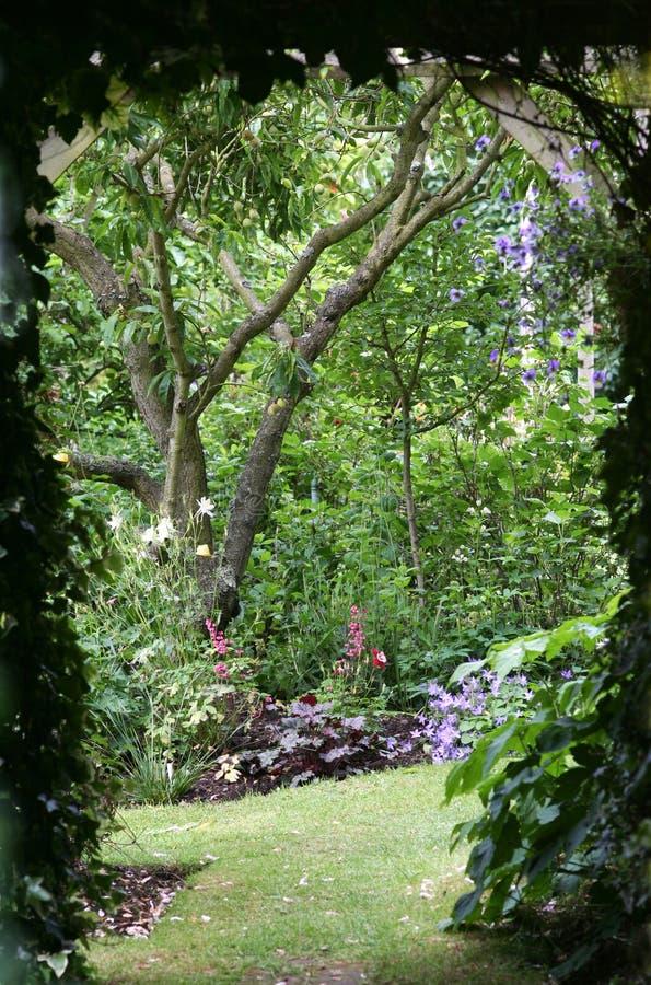 Into the Garden royalty free stock photos