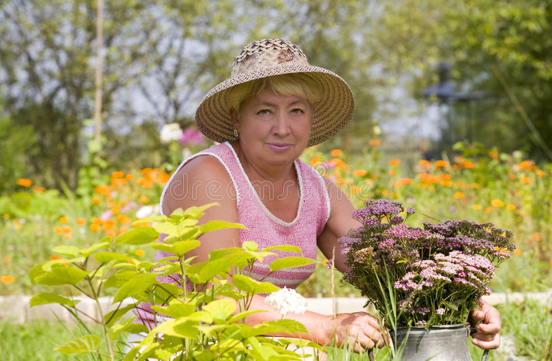 In the garden. Old woman maintains a garden royalty free stock image