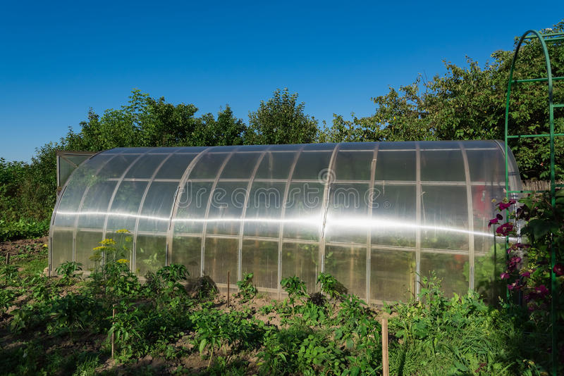 In the garden arched greenhouse stock photo