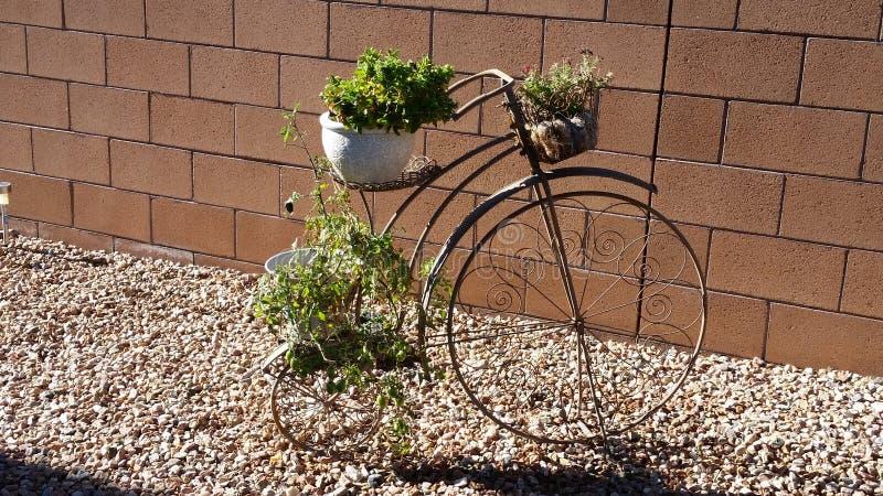Garden Art royalty free stock image