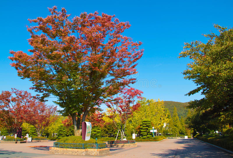 Download Garden With Autumn Scenery. Stock Image - Image: 30297427