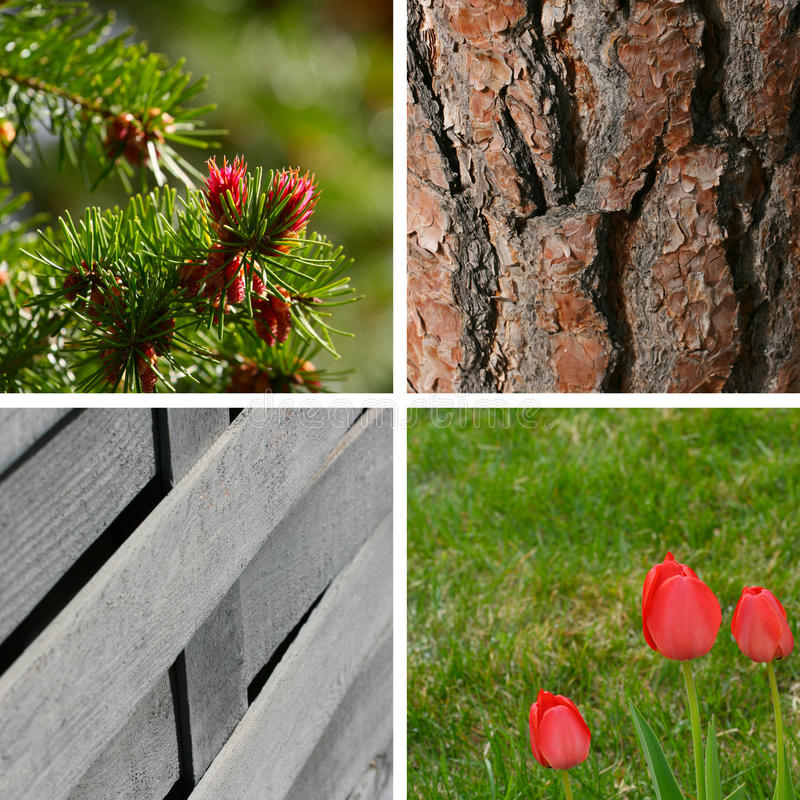 Download Garden Backgrounds Royalty Free Stock Photos - Image: 14679068