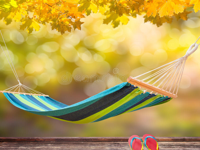 Garden backyard. Relax in hammock at backyard in autumn stock images