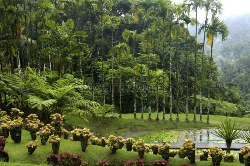 Garden of Balata royalty free stock photo