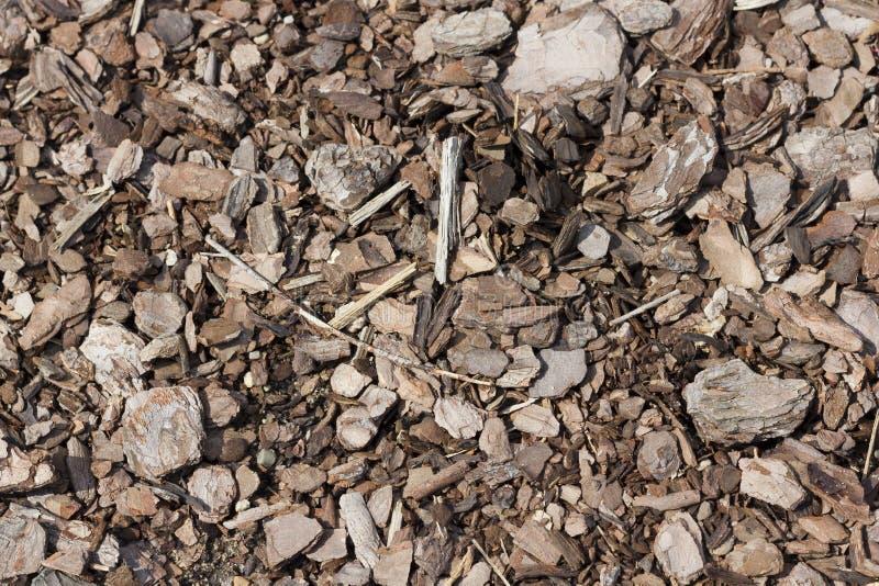 Download Garden bark stock image. Image of element, obsolete, closeup - 26377733