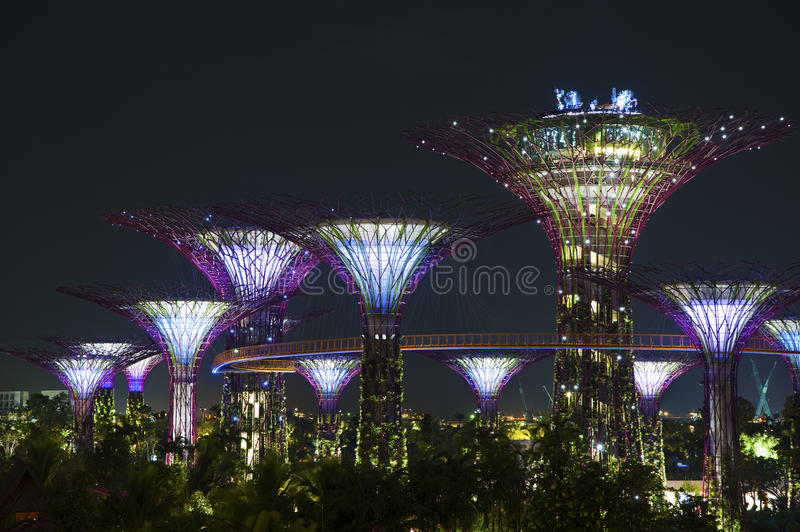Garden by the bay Singapore. Supertrees Grove of Garden by the bay in Singapore stock photos