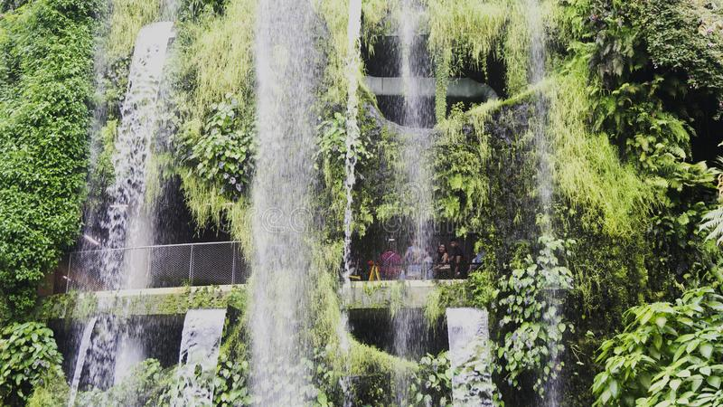 Waterfall in Cloud Forest Garden By the Bay in Singapore stock image