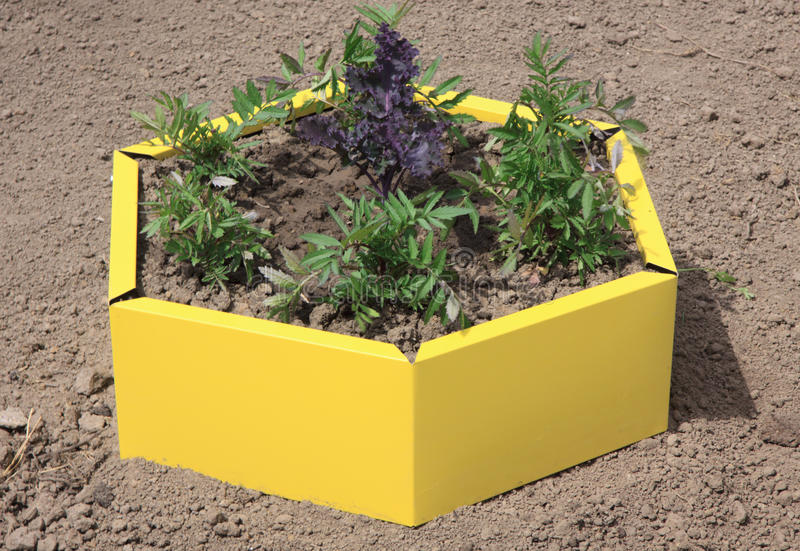 Garden Bed In The Style Of Landscape Design Stock Photo