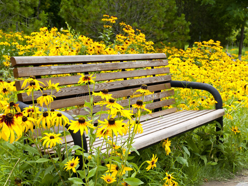 Download Garden bench stock image. Image of nature, armchair, chair - 21225201
