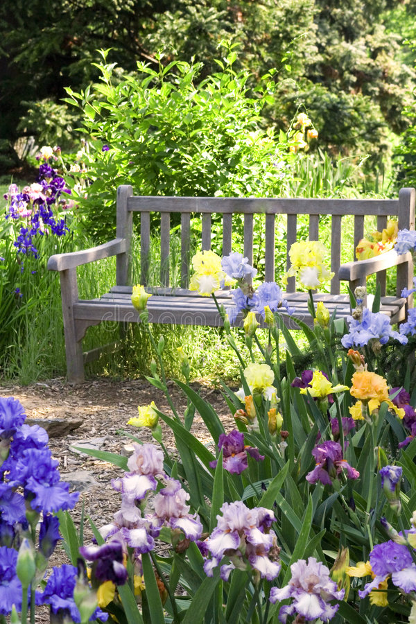 Garden Bench. Flower garden with a wooden bench