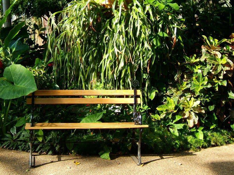 Download Garden Bench stock image. Image of walkway, botanical, leaves - 38871