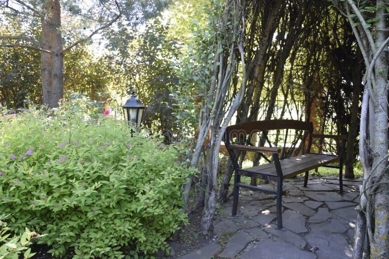 Garden bench in the shade royalty free stock photos