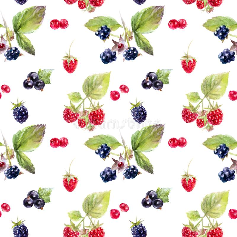 Garden berries hand draw seamless watercolor fabric pattern. royalty free illustration