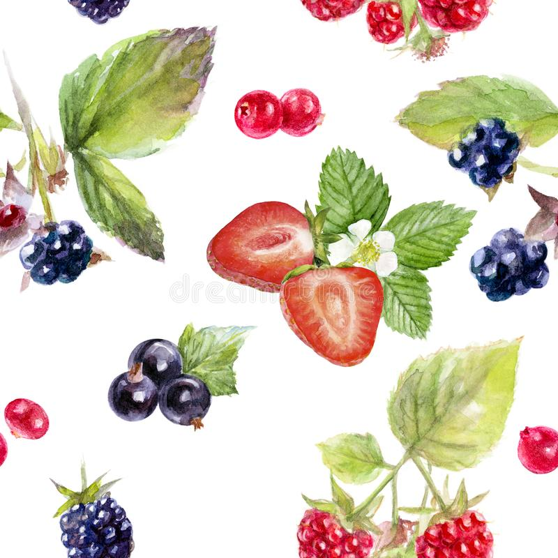 Garden berries hand draw seamless watercolor fabric pattern. vector illustration
