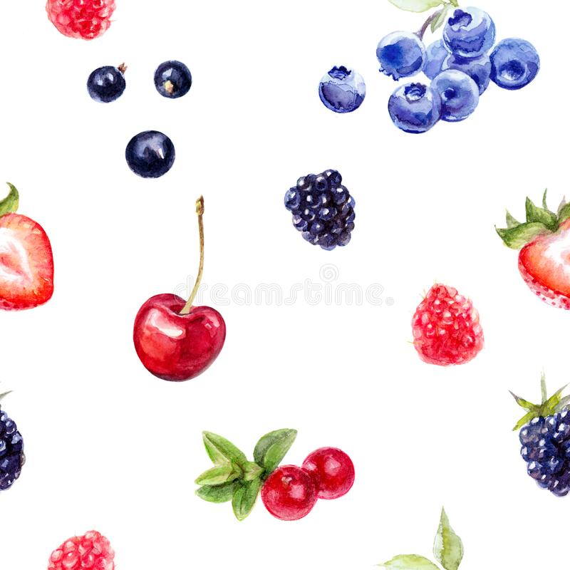 Garden berries seamless pattern watercolor illustration isolated on white. royalty free illustration
