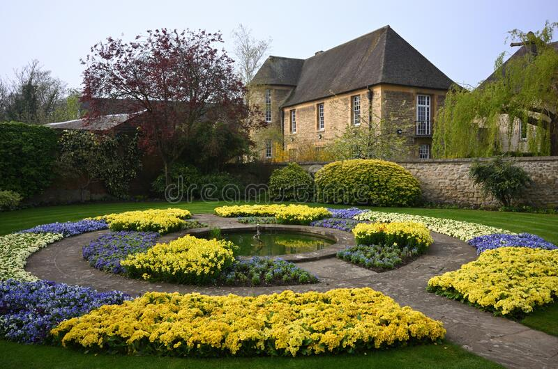 Garden with blue and yellow flowers near to an old brick building in Oxford, England, United Kingdom. A garden with blue and yellow flowers near to an old brick stock photos