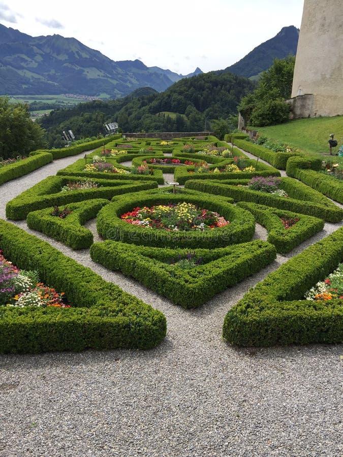 Garden, Botanical Garden, Vegetation, Flora royalty free stock photos