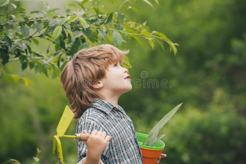 Garden. Boy with a garden tool. Nature. Ecology. Natural products from the garden. Harvest. Autumn works. Eko bio. Concept. Organic royalty free stock photography