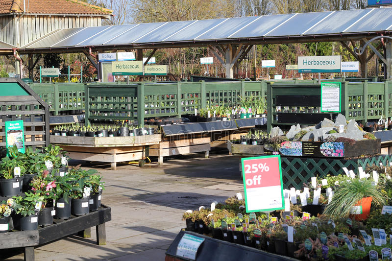 Garden center plants for sale. royalty free stock images