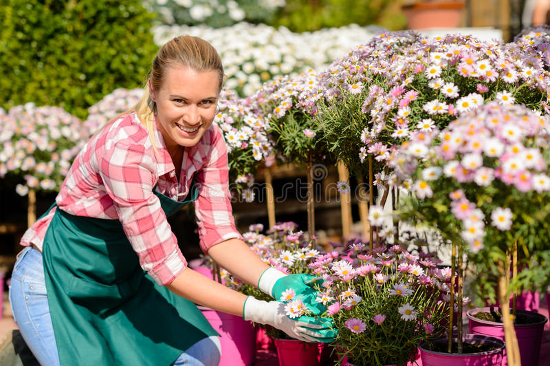 Garden center woman daisy potted flowers smiling royalty free stock photo