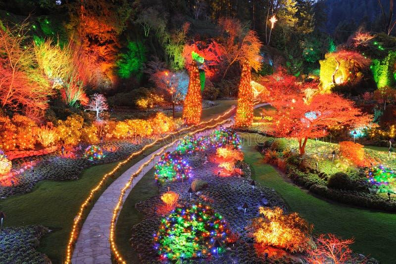 Garden christmas lighting royalty free stock photography