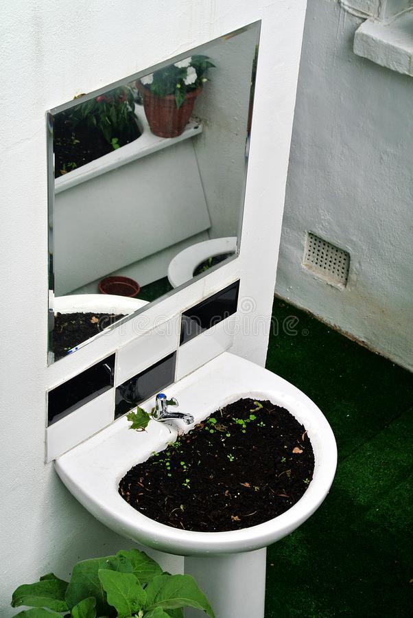 Garden created by recycling bathroom sanitary ware. The garden created by recycling bathroom sanitary ware royalty free stock images